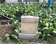 上海某小区雨水池水位、雨量、排水量监测项目图片3