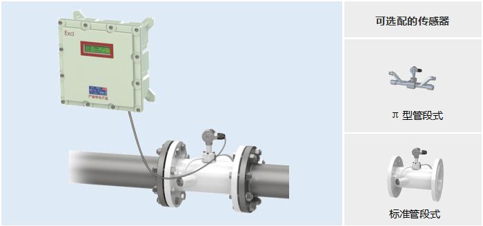 防爆管段式超声波流量——可选配的传感器