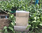 上海某小区雨水池水位、雨量、排水量监测项目图片3.jpg